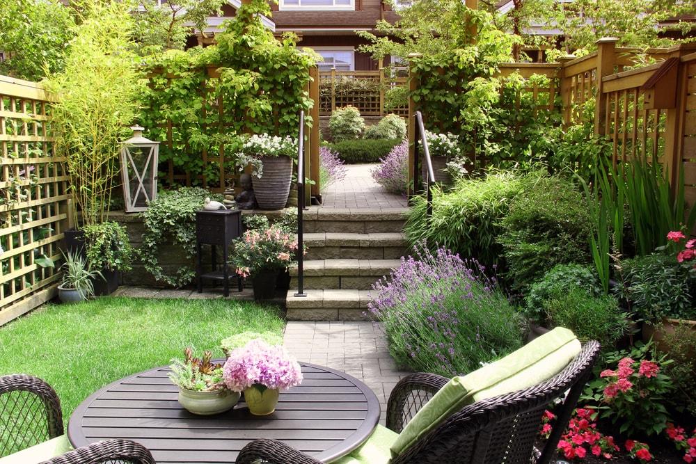middelgrote boom tuin