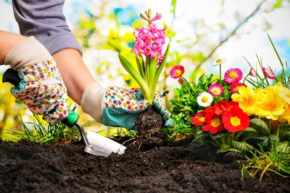 Is jouw tuin nog niet zomerproof? Maak dan gebruik van de volgende tips!