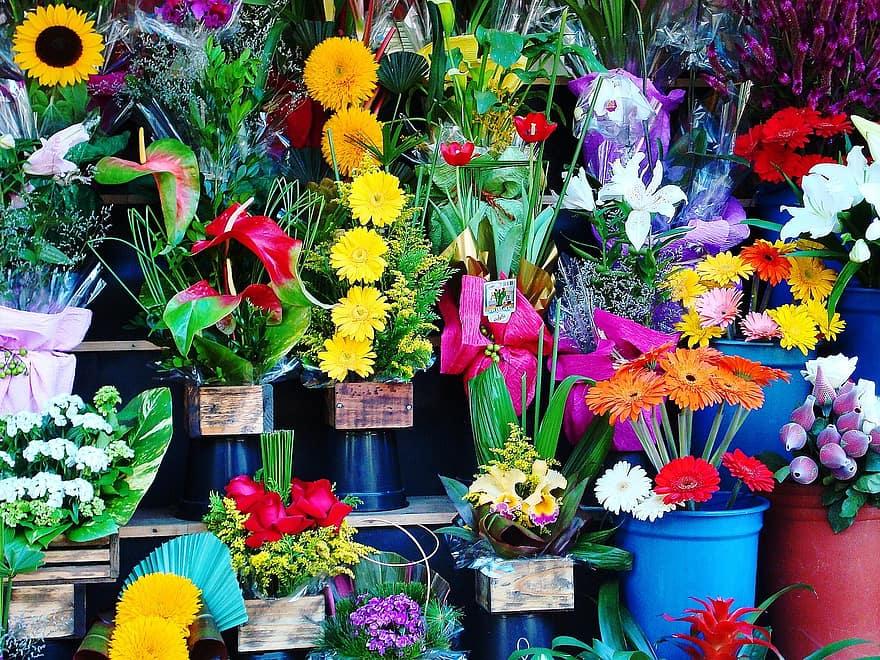 Wat vind je in een goede tuinwinkel?